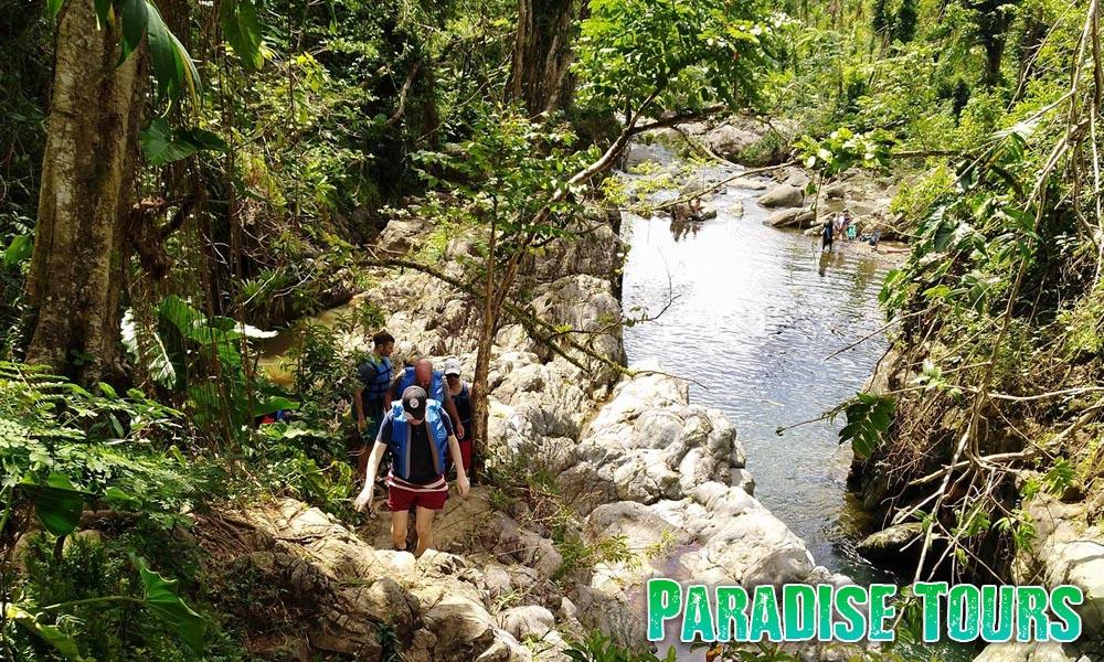 rainforest-waterslide-tour-4